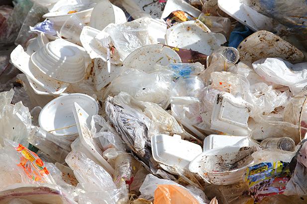 Single-use Plastic Bags and Styrofoam and Plastic Food Utensils