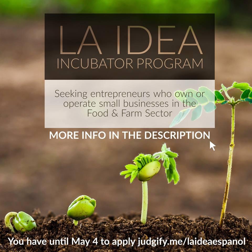 incubator program